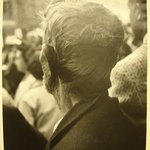 [Untitled] (Back of Mans Head)