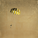 Yellow and Black Parachute