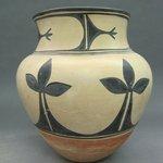 Olla (Water Jar)