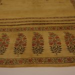 Large Section of Womans Sari