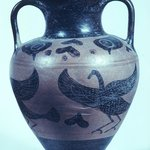 Black-Figure Amphora