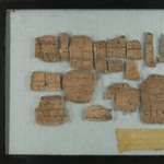 Papyrus Fragments Inscribed in Greek or Coptic