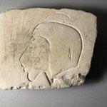Trial Piece of Akhenaten