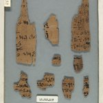 Papyrus Fragments Inscribed in Hieratic and Demotic