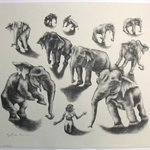 Ten Elephants