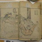 Hokusai Manga, Vol. IX