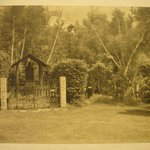 Untitled (Gate to Shrine, Two Nuns)