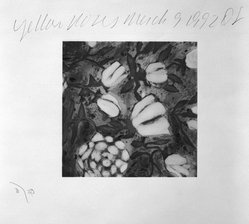 Donald Sultan (American, born 1951). <em>Yellow Roses, March 9, 1992</em>, 1992. Silkscreen with hand-color separation paper, sheet: 23 x 22 in. (58.4 x 55.9 cm). Brooklyn Museum, Gift of Meryl and Robert Meltzer, 1992.122. © artist or artist's estate (Photo: Brooklyn Museum, 1992.122_bw.jpg)