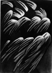 Helen Torr (American, 1886-1967). <em>Flower Forms</em>, n.d. Charcoal on paper, sheet: 14 x 9 15/16 in. (35.6 x 25.2 cm). Brooklyn Museum, Gift of Georgia and Michael de Havenon, 1992.127.1. © artist or artist's estate (Photo: Brooklyn Museum, 1992.127.1_bw.jpg)