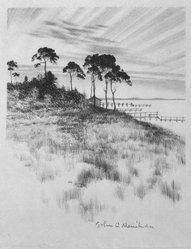 John C. Menihan (American, 1908-1992). <em>Pines Near Osterville</em>, ca. 1942. Lithograph on cream-colored thin laid paper, Image: 8 1/16 x 6 7/8 in. (20.5 x 17.5 cm). Brooklyn Museum, Gift of the family of John C. Menihan, 1993.223.3. © artist or artist's estate (Photo: Brooklyn Museum, 1993.223.3_bw.jpg)
