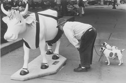 "Michael Hanulak (American, 1937-2011). <em>""Cow"" N.Y.C.</em>, 2000. Gelatin silver photograph, Sheet: 10 3/4 x 14 in. (27.3 x 35.6 cm). Brooklyn Museum, Gift of the artist, 2003.22.3. © artist or artist's estate (Photo: Brooklyn Museum, 2003.22.3.jpg)"