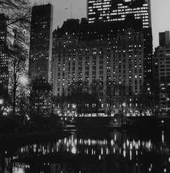 Ileane Bernstein Naprstek (American, born 1956). <em>Plaza, At the Pond, Central Park from the series Landmarks</em>, 1997. Gelatin silver photograph, image: 15 1/4 x 15 in. (38.7 x 38.1 cm). Brooklyn Museum, Gift of the artist, 2003.63.1. © artist or artist's estate (Photo: Brooklyn Museum, 2003.63.1_bw.jpg)
