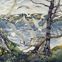 William Starkweather (American, born Scotland, 1879-1969). <em>Gulls at Shipwreck Bay</em>, ca. 1927. Transparent watercolor with touches of opaque watercolor over graphite on white, thick, rough textured wove paper, 20 x 20 in. (50.8 x 50.8 cm). Brooklyn Museum, Museum Collection Fund, 27.191. © artist or artist's estate (Photo: Brooklyn Museum, 27.191_colorcorrected_cropped_PS2.jpg)