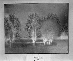 Joseph Breitenbach (American, 1896-1984). <em>Strange Landscape</em>, 1936. Gelatin silver photograph, 11 x 13 in. (27.9 x 33 cm). Brooklyn Museum, Gift of the artist, 52.101.3. © artist or artist's estate (Photo: Brooklyn Museum, 52.101.3_acetate_bw.jpg)
