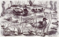 Aileen Trump. <em>The Pond</em>, 1954. Lithograph, Sheet: 18 7/8 x 24 7/8 in. (47.9 x 63.2 cm). Brooklyn Museum, Gift of Artists Equity, Chicago Chapter, 54.153.28. © artist or artist's estate (Photo: Brooklyn Museum, 54.153.28.jpg)