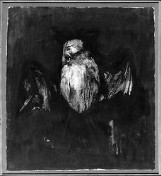 Aubrey Schwartz (American, born 1928). <em>Bird</em>. Ink and wash on paper, 25 x 20 1/2 in. (63.5 x 52.1 cm). Brooklyn Museum, Gift of Dr. Milton Kramer, 63.238.3. © artist or artist's estate (Photo: Brooklyn Museum, 63.238.3_acetate_bw.jpg)