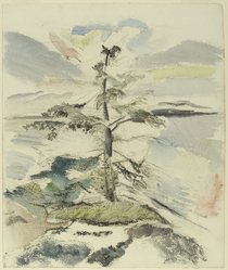 John Marin (American, 1870-1953). <em>Pine Tree</em>, 1917. Watercolor and charcoal on cream, thick, rough textured wove paper, Sheet: 19 3/8 x 16 3/8 in. (49.2 x 41.6 cm). Brooklyn Museum, Gift of Mr. and Mrs. Milton Lowenthal, 70.147. © artist or artist's estate (Photo: Brooklyn Museum, 70.147_PS2.jpg)