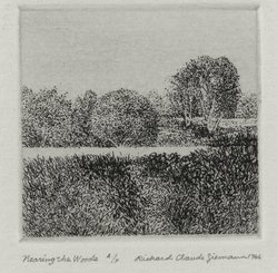 Richard Claude Ziemann (American, born 1932). <em>Nearing the Woods</em>, 1966. Etching on paper, sheet: 8 3/4 x 8 9/16 in. (22.2 x 21.7 cm). Brooklyn Museum, Gift of the artist, 77.162.7. © artist or artist's estate (Photo: Brooklyn Museum, 77.162.7_PS4.jpg)