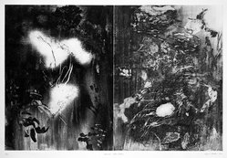 Albert Stadler (American, born 1923). <em>Diptch: Cross Creek</em>, 1976. Etching on Arches wove paper, Plate: 24 x 36 in. (61 x 91.4 cm). Brooklyn Museum, Designated Purchase Fund, 77.26. © artist or artist's estate (Photo: Brooklyn Museum, 77.26_bw.jpg)