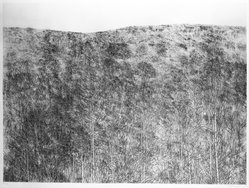 Richard Claude Ziemann (American, born 1932). <em>Story Hill</em>, 1970. Etching on paper, sheet: 35 1/4 x 44 1/4 in. (89.5 x 112.4 cm). Brooklyn Museum, Gift of Impressions Workshop, 77.274.6. © artist or artist's estate (Photo: Brooklyn Museum, 77.274.6_bw.jpg)