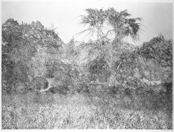 Richard Claude Ziemann (American, born 1932). <em>Morning Light</em>, 1969. Etching on paper, sheet: 35 1/8 x 43 7/8 in. (89.2 x 111.4 cm). Brooklyn Museum, Gift of Impressions Workshop, 77.274.7. © artist or artist's estate (Photo: Brooklyn Museum, 77.274.7_bw.jpg)
