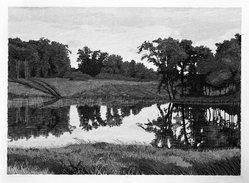 Gordon Mortensen (American, born 1938). <em>Summer Pond</em>, 1976. Woodcut on paper, sheet: 21 1/4 x 29 in. (54 x 73.7 cm). Brooklyn Museum, Gift of ADI Gallery, 77.62.6. © artist or artist's estate (Photo: Brooklyn Museum, 77.62.6_bw.jpg)