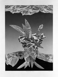 Jim McLean (American, born 1928). <em>Primitive Plant - State I</em>, 1975. Relief etching on paper, sheet: 28 1/2 x 21 5/8 in. (72.4 x 54.9 cm). Brooklyn Museum, Gift of the artist, 77.71.1. © artist or artist's estate (Photo: Brooklyn Museum, 77.71.1_bw.jpg)
