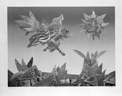Jim McLean (American, born 1928). <em>Flight Over Busch Gardens</em>, 1975. Relief etching, sheet: 28 1/2 x 35 1/4 in. (72.4 x 89.5 cm). Brooklyn Museum, Gift of the artist, 77.71.3. © artist or artist's estate (Photo: Brooklyn Museum, 77.71.3_bw.jpg)