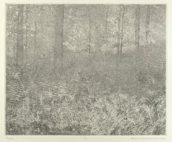 Richard Claude Ziemann (American, born 1932). <em>Ferns</em>, 1978-1979. Etching and engraving on paper, sheet: 15 3/8 x 17 in. (39.1 x 43.2 cm). Brooklyn Museum, Designated Purchase Fund, 80.150.2. © artist or artist's estate (Photo: Brooklyn Museum, 80.150.2_PS4.jpg)