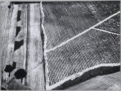 Mario Giacomelli (Italian, 1925-2000). <em>[Untitled]</em>, 1976. Gelatin silver photograph, sheet: 11 1/2 x 15 7/16 in. (29.2 x 39.2 cm). Brooklyn Museum, Gift of Dr. Daryoush Houshmand, 80.216.11. © artist or artist's estate (Photo: Brooklyn Museum, 80.216.11_PS1.jpg)