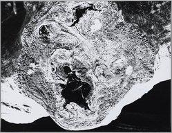 Mario Giacomelli (Italian, 1925-2000). <em>[Untitled]</em>, n.d. Gelatin silver photograph, sheet: 11 3/8 x 14 3/4 in. (28.9 x 37.5 cm). Brooklyn Museum, Gift of Dr. Daryoush Houshmand, 80.216.33. © artist or artist's estate (Photo: Brooklyn Museum, 80.216.33_PS1.jpg)