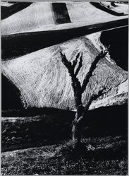 Mario Giacomelli (Italian, 1925-2000). <em>[Untitled]</em>, 1956. Gelatin silver photograph, Sheet: 15 11/16 x 11 9/16 in. (39.8 x 29.4 cm). Brooklyn Museum, Gift of Dr. Daryoush Houshmand, 80.216.3. © artist or artist's estate (Photo: Brooklyn Museum, 80.216.3_PS1.jpg)