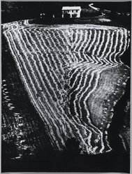 Mario Giacomelli (Italian, 1925-2000). <em>[Untitled]</em>, n.d. Gelatin silver photograph, sheet: 15 1/2 x 11 11/16 in. (39.4 x 29.7 cm). Brooklyn Museum, Gift of Dr. Daryoush Houshmand, 80.216.6. © artist or artist's estate (Photo: Brooklyn Museum, 80.216.6_PS1.jpg)