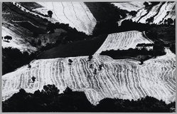 Mario Giacomelli (Italian, 1925-2000). <em>[Untitled]</em>, 1975. Gelatin silver photograph, sheet: 10 x 15 5/8 in. (25.4 x 39.7 cm). Brooklyn Museum, Gift of Dr. Daryoush Houshmand, 80.216.9. © artist or artist's estate (Photo: Brooklyn Museum, 80.216.9_PS1.jpg)