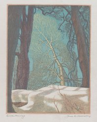 James D. Havens (American, 1900-1960). <em>Winter Morning</em>, 1951. Wood engraving, Sheet: 10 5/8 x 8 1/8 in. (27 x 20.6 cm). Brooklyn Museum, Designated Purchase Fund, 80.60.5. © artist or artist's estate (Photo: Brooklyn Museum, 80.60.5_PS4.jpg)