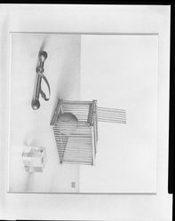 George W. Staempfli (American, born Switzerland, 1910-1999). <em>The Cage</em>, 1976. Graphite on paper, image: 10 7/16 x 11 5/16 in. (26.5 x 28.7 cm). Brooklyn Museum, Designated Purchase Fund, 82.212. © artist or artist's estate (Photo: Brooklyn Museum, 82.212_bw.jpg)