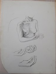 James Brooks (American, 1906-1992). <em>[Untitled] (Nude Female Upper Torso and Two Hands)</em>, n.d. Charcoal on paper, Sheet: 21 x 16 in. (53.3 x 40.6 cm). Brooklyn Museum, Gift of Charlotte Park Brooks in memory of her husband, James David Brooks, 1996.54.103. © artist or artist's estate (Photo: Brooklyn Museum, CUR.1996.54.103.jpg)