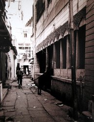 Rebecca Weinstein. <em>Cow Alley, Benares</em>, 1997. Chromogenic photograph on Kodak Professional paper, Image: 18 x 13 3/4 in. (45.6 x 34.7 cm). Brooklyn Museum, Purchased with funds given by the Horace W. Goldsmith Foundation, Karen B. Cohen, Ardian Gill, and Dr. Joel E. Hershey, 1998.117.3. © artist or artist's estate (Photo: Image courtesy of the artist, CUR.1998.117.3_artist_photograph.jpg)