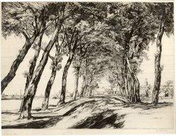 William Palmer Robins (British, 1882-1952). <em>The Ramparts, Sluis</em>, 1931. Drypoint on paper, 12 7/8 x 17 9/16 in. (32.7 x 44.6 cm). Brooklyn Museum, Frank Sherman Benson Fund, 32.53. © artist or artist's estate (Photo: Brooklyn Museum, CUR.32.53.jpg)
