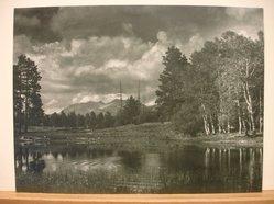 Dr. B. J. Ochsner (American, 1869-1953). <em>Wilderness Pond</em>. Photograph, 9 1/2 × 13 in. (24.1 × 33 cm). Brooklyn Museum, Gift of the artist, 44.56 (Photo: Brooklyn Museum, CUR.44.56.jpg)