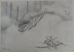 Sari Dienes (American, 1899-1992). <em>Fire Island</em>, n.d. Graphite on paper, sheet: 14 3/16 x 20 in. (36 x 50.8 cm). Brooklyn Museum, Anonymous gift, 48.73. © artist or artist's estate (Photo: Brooklyn Museum, CUR.48.73.jpg)