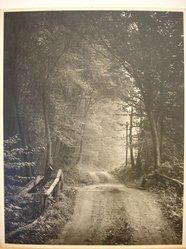 Herman de Wetter (American, born Estonia, 1880-1950). <em>Misty Morning</em>, 1945. Photograph, 14 x 11 in. (35.6 x 27.9 cm). Brooklyn Museum, Gift of Mrs. Herman de Wetter, 52.161.4. © artist or artist's estate (Photo: Brooklyn Museum, CUR.52.161.4.jpg)
