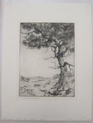Arthur William Heintzelman (American, 1891-1965). <em>Annisquam River from Babson's Hill</em>, 1919. Etching Brooklyn Museum, Gift of The Louis E. Stern Foundation, Inc., 64.101.203. © artist or artist's estate (Photo: Brooklyn Museum, CUR.64.101.203.jpg)