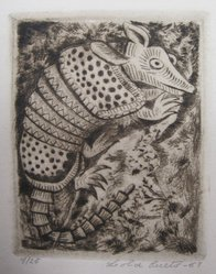 Lola Cueto (Mexican, 1897-1978). <em>Armadillo</em>. Etching Brooklyn Museum, Gift of Mr. and Mrs. Gustave Gilbert, 66.199.10. © artist or artist's estate (Photo: Brooklyn Museum, CUR.66.199.10.jpg)